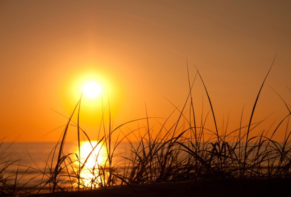 Fototapete Nr. 3680 - Dune sunset