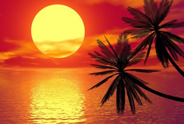 Fototapete Nr. 3961 - Caribbean Sunset