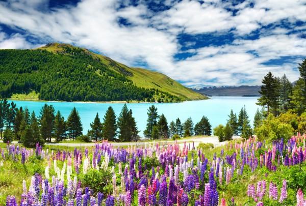 Fototapete Nr. 3290 - Bergsee in Neuseeland