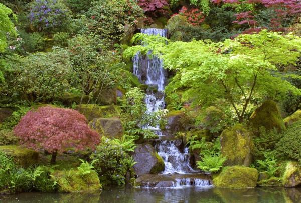 Fototapete Nr. 3203 - Japanese garden fall