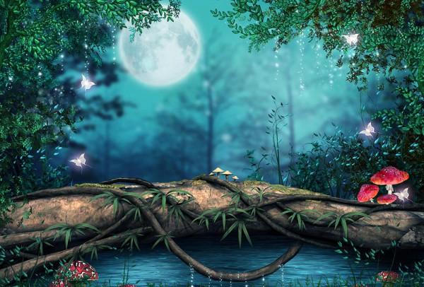 Fototapete Nr. 3760 - Magischer Mond