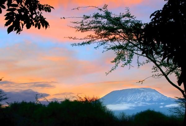 Fototapete Nr. 3535 - Kilimandscharo Evening