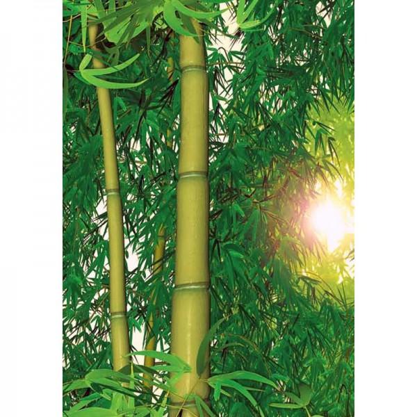 Fototapete Nr. 8490 - Bambus-Dschungel