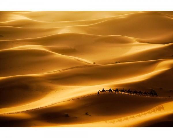 Fototapete Nr. 4047 - Golden Sahara