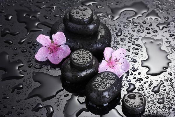 Fototapete Nr. 3817 - Spa & Sakura Flowers
