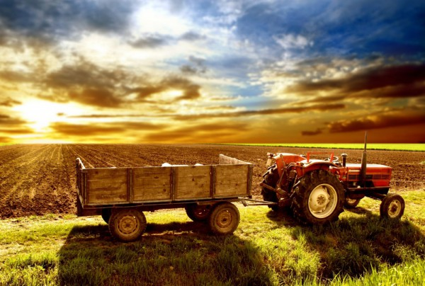 Fototapete Nr. 3517 - Tractor II