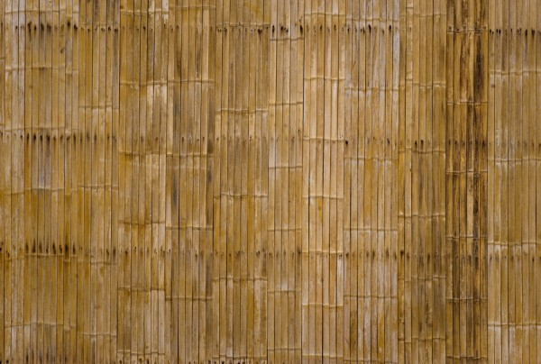 Fototapete Nr. 3811 - Bambuswand