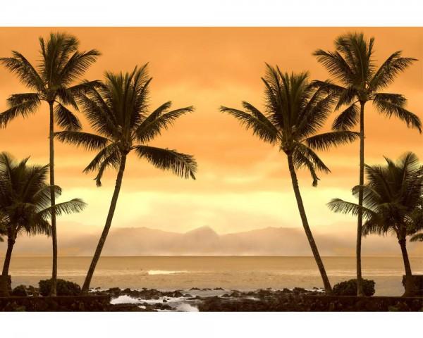 Fototapete Nr. 4040 - St. Lucia