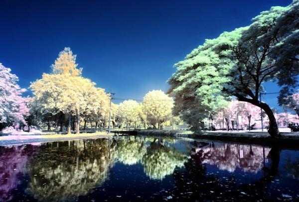 Fototapete Nr. 3141 - See infrarot