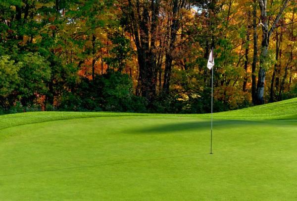 Fototapete Nr. 3453 - Golfplatz