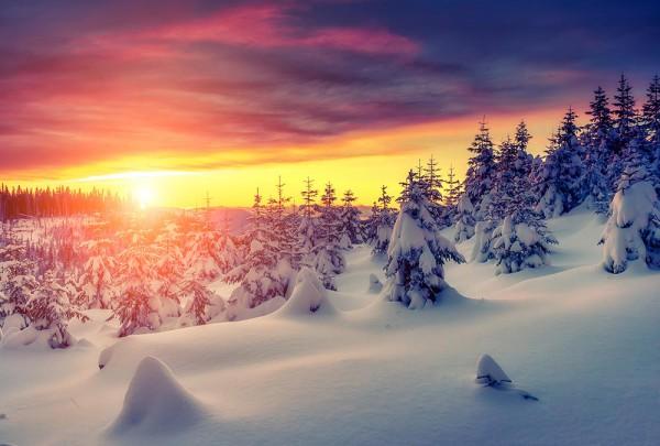 Fototapete Nr. 3025 - Winterwunderland