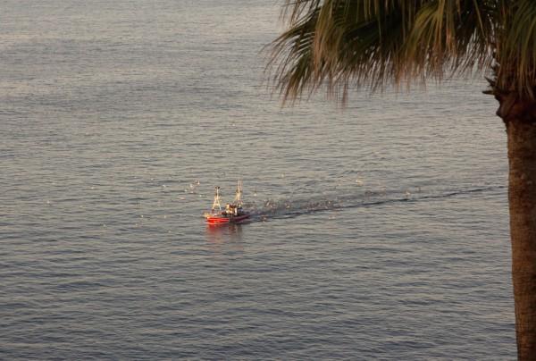 Fototapete Nr. 3844 - Mediterran Fishing