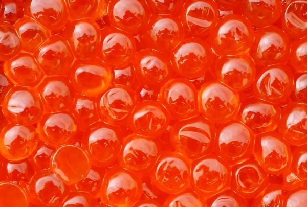 Fototapete Nr. 3362 - Red Caviar