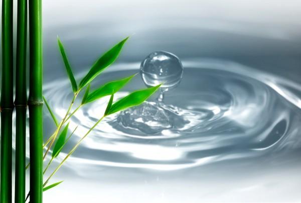 Fototapete Nr. 3447 - Bamboo Drop