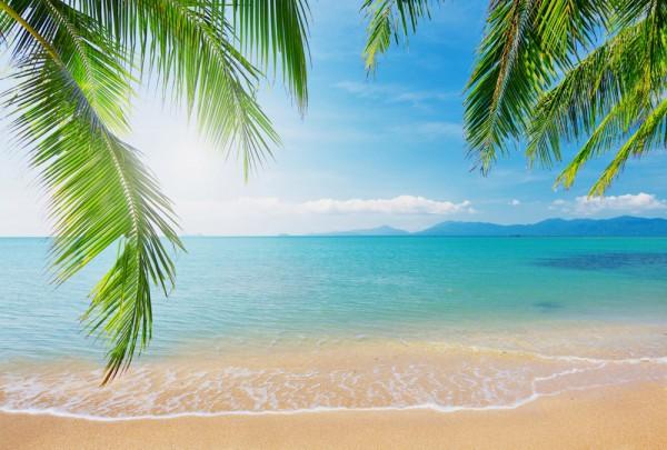 Fototapete Nr. 3593 - Sandy beach