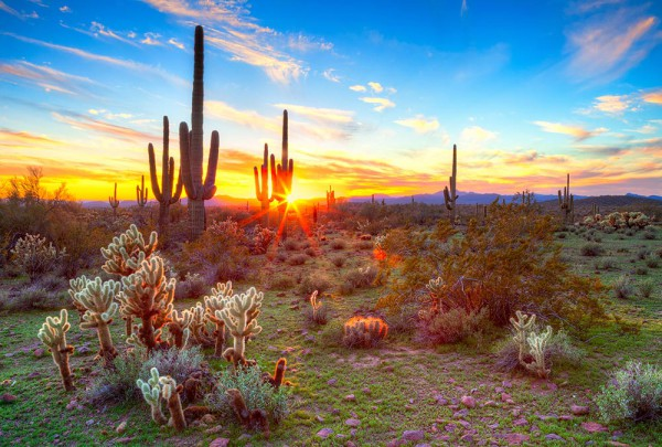 Fototapete Nr. 3047 - Arizona Sunrise