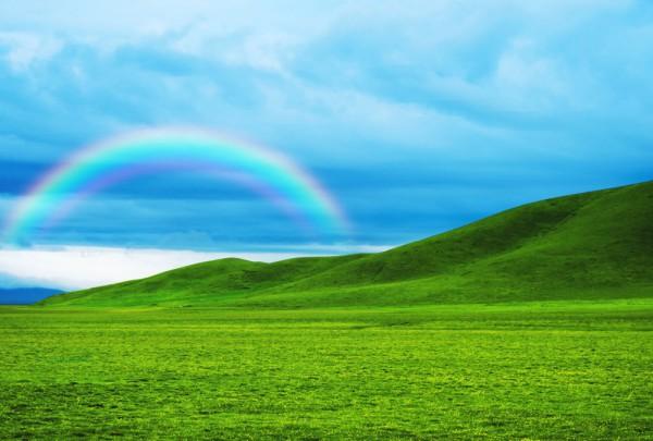 Fototapete Nr. 3455 - Green Rainbow