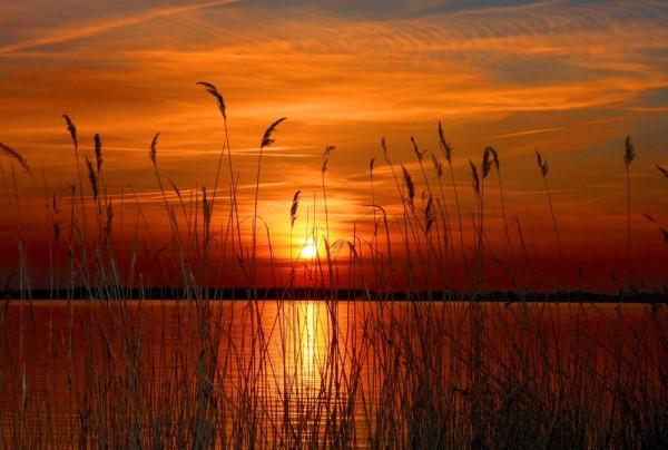 Fototapete Nr. 4304 - Pawnee Lake Sunset