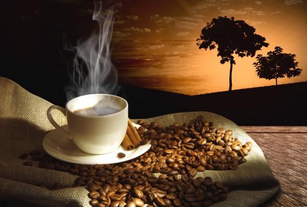 Fototapete Nr. 3797 - African coffee