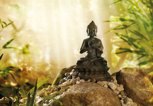 Fototapete Nr. 9895 - Bronce Buddha