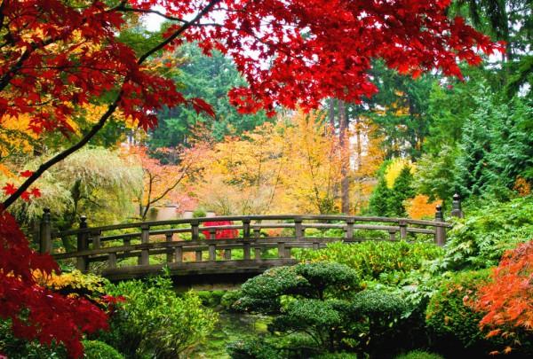 Fototapete Nr. 3367 - Japanese garden