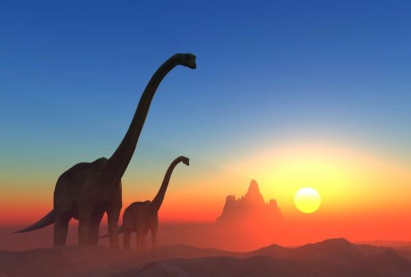 Fototapete Nr. 3691 - Im Land der Dinosaurier