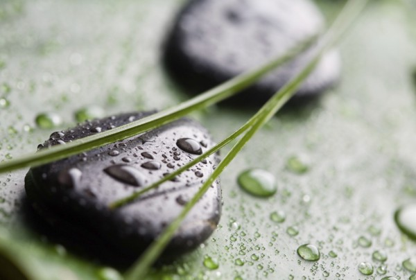 Fototapete Nr. 4260 - Stone on Green