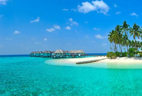 Fototapete Nr. 3566a - Maldive Island