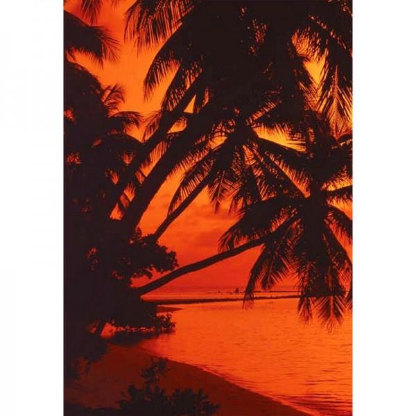 Fototapete Nr. 8745 - Honolulu Sunset