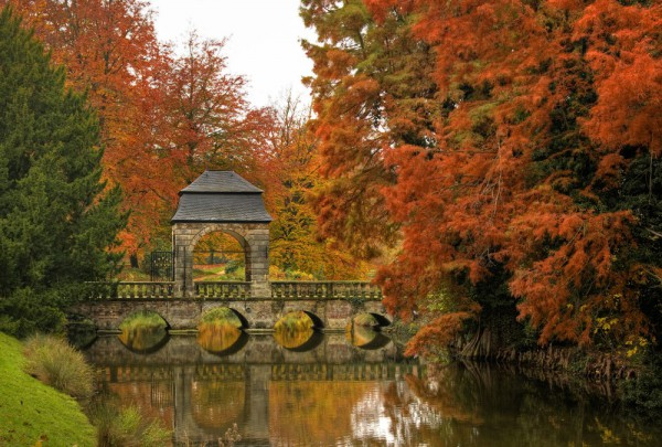 Fototapete Nr. 3623 - Autumn park
