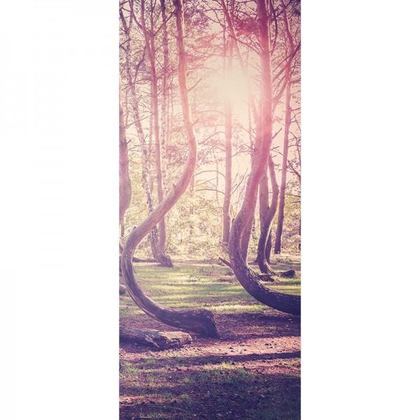 Türtapete Nr. 2935 - Wald der Erinnerung
