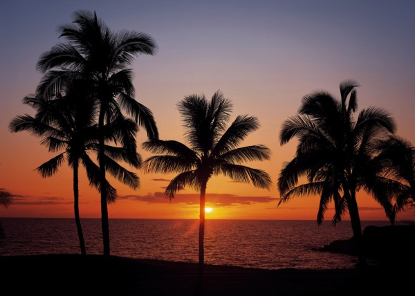 Fototapete Nr. 8740 - Huahine Sunset