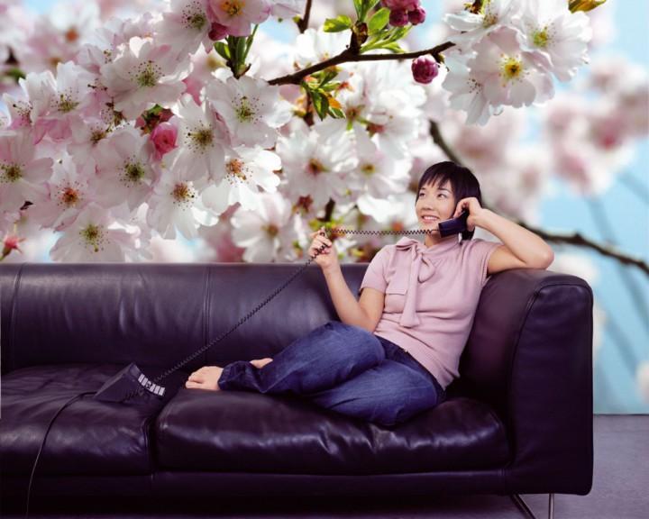 Romantische Tapeten Petite Fleur : Bl?ten Fototapeten Tapeten kaufen – Ihre Tapete online bestellen